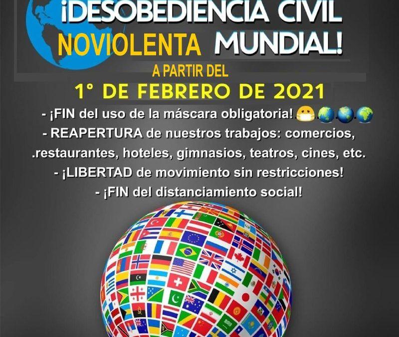 Plan Desobediencia Civil Noviolenta 1 Febrero 2021