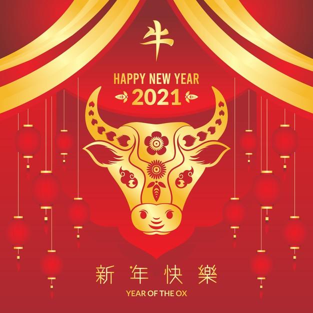 El año del buey de oro