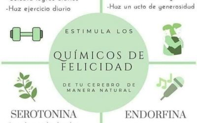 Tratamientos naturales para la salud integral